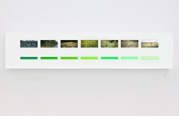 lightboxes - 7 hues, scales of green, 2005
