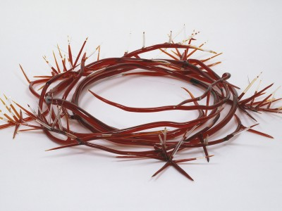 crown of thorns, 1994